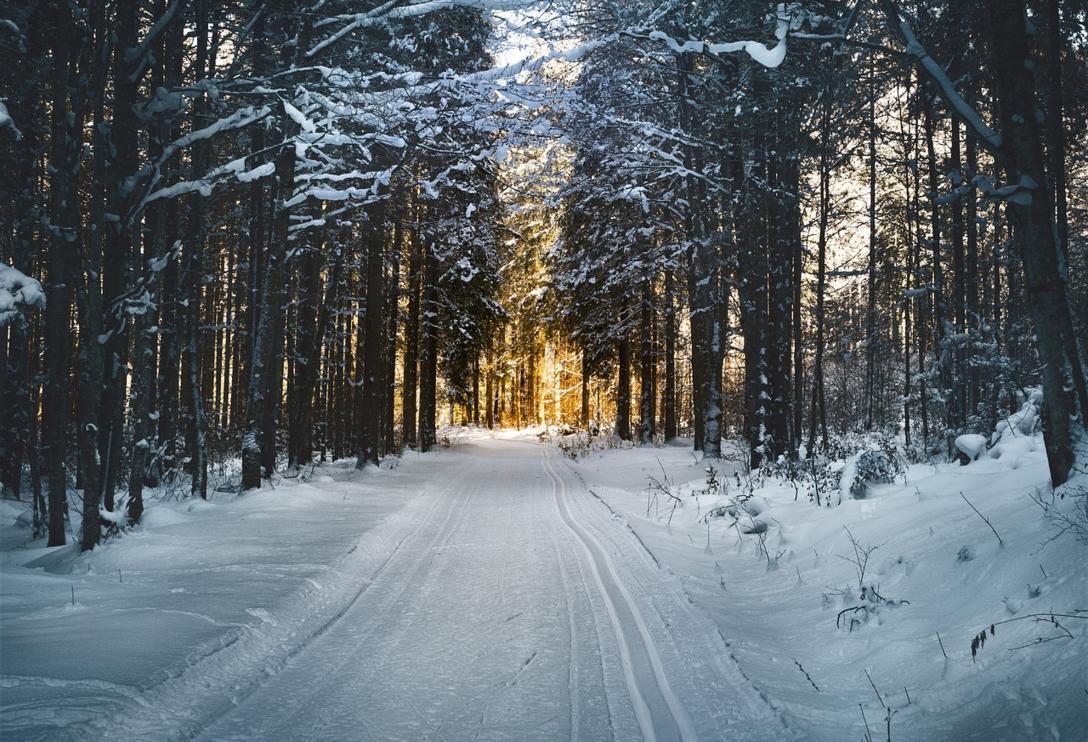 cross-country-skiing-2065439_1280.jpg